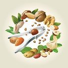 268399,Ground Nut,Close-up,Square,Cut Out,Brazil,Group Of People,Pine Nut,Metallic,Walnut,Sign,Work Tool,Dry,Ingredient,Steel,Healthy Lifestyle,Raw Food,Collection,Hazelnut,Illustration,Nature,People,Leaf,Metal,Hazel Tree,Symbol,Pinaceae,Cracked,Food,Nutshell,Organic,Aubusson,Snack,Insignia,Peanut - Food,Cooking Oil,Nutcracker,Healthy Eating,Vegetarian Food,Almond,Backgrounds,Nut - Food,Pine Tree,Walnut,Vector,Roasted,Design,Pistachio,Seed,Cashew,Pattern,White Color,Design Element,Green Color,White Background