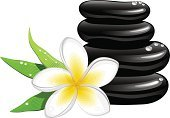 Health Spa,Spa Treatment,Symbol,Frangipani,Computer Icon,Stone Material,Flower,Vector,Single Flower,Balance,Pebble,Healthy Lifestyle,Black Color,White,Ilustration,Drop,Leaf,Yellow,Dew,Green Color,Illustrations And Vector Art,Massage Stones,Beauty And Health