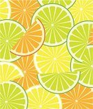 Lime,Citrus Fruit,Slice,Fruit,Orange Color,Juice,Backgrounds,Freshness,Vector,Green Color,Yellow,Organic,Food,Chopped,Refreshment,Ilustration,Nature,Single Object,Food And Drink,Illustrations And Vector Art,Sweet Food,Fruits And Vegetables,Vector Backgrounds,Circle,Image