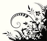 Swirl,Leaving,Black Color,Black And White,White,Plant,Vector,Scroll Shape,Nature,Scroll,Silhouette,Vector Ornaments,Vector Florals,No People,Illustrations And Vector Art