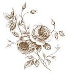 Rose - Flower,Rosé,Flower,Old-fashioned,Single Flower,Retro Revival,Engraved Image,Sketch,Vector,Branch,Old,Plant,Ilustration,Ink,Leaf,Outline,Backgrounds,Nature,Pencil Drawing,Computer Graphic,Summer,Paintings,Wallpaper Pattern,Image,Stem,freehand,Stroke,Swirl,Ornate,Petal,Vector Backgrounds,Vegetative Stage,Flowers,Painted Image,Illustrations And Vector Art,Nature