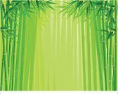Bamboo,Forest,Backgrounds,Vector,Green Color,Plant,Tree,Leaf,Ilustration,Plants,Nature Backgrounds,Nature,Beauty In Nature,Nature