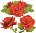 Rose - Flower,Bouquet,Red,Vector,Flower,Single Flower,Cut Flowers,Ilustration,Symbol,Valentine's Day - Holiday,Three Objects,Bunch,White,Clip Art,Bud,Set,Greeting Card,Backgrounds,Valentine Card,Design Element,Leaf,Dew,Greeting,Drop,Love,Saint,Computer Icon,Isolated,Holiday,Cultures,Decoration,Letter,Banner,Celebration,Decor,Exploding,White Background,Celebration Event,Classical Style,Illustrations And Vector Art,Romance,Modern,Green Color,Holidays And Celebrations,Congratulating,Freshness,Vector Florals,Valentine's Day,Isolated-Background Objects,Isolated Objects