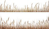 Grass,Nature,Dry,Tall,Brown,Vector,Plant,Color Image,Beauty In Nature,Isolated On White,No People,Copy Space,Landscapes,Isolated-Background Objects,Plants,Isolated Objects,Nature