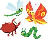 Dragonfly,Caterpillar,Cartoon,Butterfly - Insect,Beetle,Worm,Insect,Vector,Clip Art,Animal,Drawing - Art Product,Ilustration,Small,hexapod,Wildlife,Flying,Nature,Life,Insects,Illustrations And Vector Art,mosquito hawk,Vector Cartoons,Red,Green Color,lepidopterans,Yellow,Animals And Pets,Brown