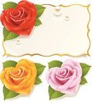 Rose - Flower,Frame,Flower,Pink Color,Greeting Card,Clip Art,Single Flower,Vector,Yellow,Gold Colored,Gold,Red,Heart Shape,Banner,Valentine's Day - Holiday,Postcard,Pearl,Valentine Card,Design Element,Backgrounds,Holiday,Love,Ilustration,Orange Color,Romance,Placard,Computer Icon,Beauty,Beautiful,Symbol,Beauty In Nature,Decoration,Celebration,Petal,Honeymoon,Congratulating,Engagement,White Background,Freshness,Valentine's Day,Drop,Saint,Flowers,Holidays And Celebrations,Vector Florals,Nature,Illustrations And Vector Art,Celebration Event,Isolated,Dew