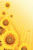 Sunflower,Summer,Backgrounds,Retro Revival,Vector,Vertical,Yellow,Plant,Computer Graphic,Beauty In Nature,Gold Colored,Creativity,Color Gradient,Nature,Stem,Multi Colored,Flower Head,Scroll Shape,Ilustration,Full Frame,Digitally Generated Image,Nature,Vector Backgrounds,Circle,Flowers,Illustrations And Vector Art,Landscapes,Front View,Vibrant Color,Close-up