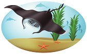 Manta Ray,Ray,Stingray,Sea Life,Starfish,Underwater,Vector,Sea,Algae,Fish,Water,Animals And Pets,Design,Nature,Animal Backgrounds,Deep,Sea Life,Nature Backgrounds,Ilustration,Swimming Animal,Animal Mouth,Backgrounds,Blue