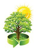 Tree,Oak,Symbol,Pollution,Environment,Green Color,Vector,Nature,Ilustration,Tree Trunk,Drawing - Art Product,Single Object,Leaf,Environmental Conservation,White,Arrow Symbol,Drawing - Activity,Grass,Isolated,Plant,Lush Foliage,Glowing,Plants,Bright,Isolated Objects,Nature,Illustrations And Vector Art,Yellow