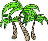 Palm Tree,Palm Leaf,Leaf,Cartoon,Tropical Climate,Plant,Vector,Vector Cartoons,Plants,Illustrations And Vector Art,Green Color,Nature