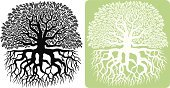 Tree,Root,Oak Tree,Silhouette,Vector,Tree Canopy,Ilustration,Black Color,Leaf,Green Color,Nature Abstract,Plants,Illustrations And Vector Art,Nature