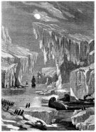 Northwest Passage,Walrus,Iceberg - Ice Formation,Sea Passage,Canada,Ilustration,Penguin,Exploration,Winter,Fjord,Old-fashioned,Cold - Termperature,Drawing - Art Product,Fame,Cultures,Sea,Danger,The Past,Old,British Culture,Sea Bird,Transportation,Royal Navy,Franklin - Tennessee,Outdoors,Hms Erebus,Monochrome,Sailing Ship,19th Century Style,Line Art,Image Created 19th Century,Antique,Engraved Image,Vertical,Ice,Hms Terror,Ephemera,Military Ship,Image Created 1870-1879,English Culture,Black And White,Adventure,History,Social History,North America