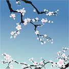 Blossom,Branch,Cherry Blossom,Tree,Vector,Ilustration,East Asian Culture,Flower,Beauty In Nature,Blue,Springtime,Pink Color,Sky,Nature,Flowers,Nature,Illustrations And Vector Art,Square