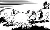 Chicken - Bird,Farm,Woodcut,Chicken Coop,Rooster,Ilustration,Farmhouse,Poultry,Vector,White,Black Color,Landscape,Baby Chicken,Hill,Bird,Protection,Bantam,Herb,Pecking,Farm Animals,Baby Animals,Animals And Pets,Security,White Background,Hill Range,Care,Meadow,Scenics,Birds
