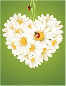 Bouquet,Chamomile,Flower,Chamomile Plant,Greeting Card,Single Flower,Invitation,Heart Shape,Cut Flowers,Ladybug,Love,Floral Pattern,Vector,Frame,Romance,Celebration,Gift,Bunch,Valentine's Day - Holiday,Valentine Card,Pattern,Backgrounds,Banner,Letter,Postcard,Wallpaper Pattern,Blossom,White,Couple,Dew,Day,Flower Head,Isolated,Design,Holiday,Placard,Season,Decoration,Artificial,Vacations,Freshness,Animals And Pets,Blank,Poster,Travel Destinations,Illustrations And Vector Art,Red,Nature,Bud,Petal,Flowers,Nature,Insects,Vector Florals