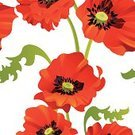 Pattern,Flower,Single Flower,Seamless,Poppy,Floral Pattern,Red,Textile,Backgrounds,Vector,Leaf,Summer,Decoration,Flower Head,Blossom,Wrapping Paper,Wallpaper Pattern,Ilustration,Elegance,Nature