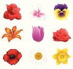 Flower,Lily,Tulip,Pansy,Single Object,Daffodil,Rose - Flower,Vector,Amaryllis,Poppy,White,Frangipani,Red,Floral Pattern,Pink Color,Collection,Yellow,Isolated,Purple,Group of Objects,Springtime,Ilustration,Orange Color,Daisy,Set,Illustrations And Vector Art,Nature,Decoration,Beauty In Nature,Flowers,Nature