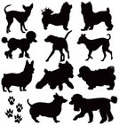Dog,Silhouette,Poodle,Symbol,Paw,Small,Chihuahua,Pets,Vector,Puppy,breeds,Sign,Toy,Ilustration,Clip Art,Scale,svg,chewawa,Dingbat