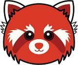 Red Panda,Panda,Animal,Cartoon,Animal Head,Vector,Anthropomorphic Face,Cute,Young Animal,Cheerful,Affectionate,Drawing - Art Product,Isolated,Animals And Pets,Circle,Feelings And Emotions,Concepts And Ideas,Illustrations And Vector Art,Mammals,White Background,Male Animal,Smiling,Happiness