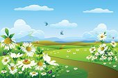 Nature,Landscape,Springtime,Footpath,Flower,Daisy,Grass,Sky,Backgrounds,Bird,Summer,Cloudscape,Ilustration,Clip Art,White,Easter,Butterfly - Insect,Green Color,Gerbera Daisy,Chamomile Plant,Morning,Blue,Lush Foliage,Color Image,Nature,Spring,Illustrations And Vector Art,Freshness,Vector Backgrounds,Copy Space