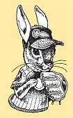 Rabbit - Animal,Baseball - Sport,Drawing - Art Product,Baseball Cap,Vector,hand drawn,Sport,Competition,Black And White,Throwing,Competitive Sport,Team Sport,Sports Glove,Baseball Player,Pitcher,Ilustration,Pen And Ink,Baseball Glove