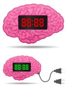 Cartoon,Human Brain,Learning,Digital Display,Clock,Alarm Clock,Electric Plug,Electricity,Body,Cable,Human Internal Organ,Education,Design Element,Isolated,Computer Graphic,Electronics,Illustrations And Vector Art,Clip Art,Concepts And Ideas,Time,Technology,Visual Screen,Anatomy,Thinking,Ilustration,Intelligence