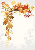 Autumn,Leaf,Frame,Falling,Frame,November,September,Rowanberry,Backgrounds,Branch,Vector,Rowan Tree,Tree,Red,Gold Colored,Forest,Maple Tree,Oak Tree,Color Image,October,Nature,Orange Color,Design,Outdoors,Season,Beauty In Nature,Day,Plant,Fall,Nature Backgrounds,Vibrant Color,Plants,Rust,Nature,Woodland,On Top Of,Yellow,Moving Down