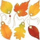 Autumn,Leaf,Sale,Label,Shopping,Clothing,Vector,Price,Oak,Symbol,Retail,Luggage Tag,Greeting Card,Oak Tree,Maple,String,Giving,Nature,Set,Orange Color,Birch,September,Leaf Vein,Chestnut Tree,Aspen,Promotion,Aspen Tree,Computer Icon,Shopping Mall,Season,Store,Birch Tree,Shopping Bag,Floral Pattern,Red,Market,Gold Colored,White,Isolated,Plant,Buying,Sold,Collection,Maple Tree,October,Lush Foliage,Yellow,Design Element,Retail/Service Industry,Selling,Illustrations And Vector Art,Fall,Nature,Vector Florals,Industry