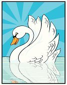 Swan,Bird,Swimming Animal,Animals And Pets,Illustrations And Vector Art,Vector Cartoons,Pond,Birds,Blue,Smiling,Elegance,White,Day,Sky