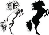 Horse,Rearing Up,Stallion,Silhouette,Vector,Black Color,Standing,White,Pony,Mane,Animals In The Wild,Sketch,Dark,Black And White,Ilustration,Animal Muscle,Isolated,Strength,Dreamlike,Farm Animals,Isolated On White,Wind,Animal,Mammals,Animals And Pets,Wild Animals,Power