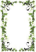 Ivy,Frame,Lily,Flower,Tendril,Green Color,Nature,Leaf,Plant,Isolated,Decoration,Blossom,Ilustration,Nature Abstract,Isolated Objects,Nature,Illustrations And Vector Art