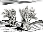 Wheat,Field,Harvesting,Ilustration,White,Occupation,Black Color,Drawing - Art Product,Hill,Food,Agriculture,Vector,Field Stubble,Sheaves Of Wheat,Art,Food Staple,Landscape,Ear Of Wheat,Food And Drink,Landscapes,Agriculture,Coltivare,Hill Range,Digitally Generated Image,Sun,Agricultural Occupation,Scenics,Computer Graphic,White Background,Summer,Monoculture,Industry,Nature,Art Product,Grain And Cereal Products