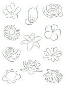 Single Flower,Lotus Water Lily,Flower,Lily,Daisy,Water Lily,Rose - Flower,Vector,Silhouette,Freesia,Simplicity,Ilustration,Snowdrop,Leaf,Hand-drawn,Plant,Set,Daisy Family,Green Color,Vector Florals,Nature,Nature,Illustrations And Vector Art,Flowers,Nature Abstract
