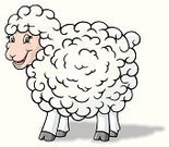 Sheep,Wool,Animated Cartoon,Sheep Farm,Animal,Farm,Mammal,Cute,Ranch,Animals And Pets,Farm Animals,Hoofed Mammal,Illustrations And Vector Art,Vector Cartoons,Characters,Female Animal,Vertebrate,White