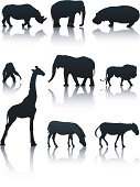 Elephant,Giraffe,Zebra,Hippopotamus,Animal,Silhouette,Symbol,African Culture,Rhinoceros,Lion - Feline,Donkey,Animals In The Wild,Wildlife,Ape,Ilustration,Vector,Walking,Black Color,Isolated On White,White Background
