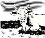 Cow,Vector,Ilustration,Pasture,Ranch,Computer Graphic,Grazing,Art Product,One Animal,Animal Themes,Vertebrate,Animals Feeding,White Background,Digitally Generated Image,Nero,Design,Ilaria Bianco,Mammal,Hoofed Mammal,Pawed Mammal,Herb