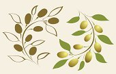 Olive,Vector,Leaf,Greece,Branch,Tree,Decoration,Autumn,Symbols Of Peace,Symbol,Ilustration,Drawing - Art Product,Floral Pattern,Line Art,Award,Plant,Antique,Ornate,Clip Art,Green Color,Design Element,Circle,Food And Drink,Illustrations And Vector Art,No People