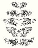 Angel,Wing,Tattoo,Eagle - Bird,White,Black Color,Retro Revival,Feather,Old-fashioned,Grunge,Bird,Modern Rock,Spread Wings,Drawing - Art Product,Vector,Victorian Style,Sketch,Ink,Symbol,Flying,Ilustration,Drawing - Activity,heraldic,Computer Graphic,Gothic Style,Part Of,Ornate,Painted Image,Arts And Entertainment,Birds,Artificial,Vector Ornaments,Arts Symbols,Shape,Illustrations And Vector Art,Animals And Pets,Set