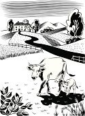 Cow,Landscape,Farm,Ranch,Farmhouse,Calf,Hill,Herb,Pasture,Animals Feeding,Vector,Art Product,Grazing,Computer Graphic,Animals And Pets,White Background,Vertebrate,Digitally Generated Image,Ilustration,Two Animals,Mammal,Female Animal,Baby Animals,Scenics,Black Color,Mammals,Hoofed Mammal,Pawed Mammal,Animal,Farm Animals,White,Design
