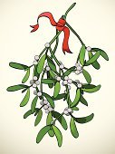 Mistletoe,Winter,Christmas,Luck,Branch,Holiday,Leaf,Plant,Cultures,Symbol,Berry Fruit,Ilustration,Red,Spirituality,Holidays And Celebrations,Plants,Christmas,Vector Cartoons,Nature,Illustrations And Vector Art,Vector,Celebration,Green Color,Ribbon