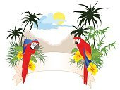 Parrot,Tropical Climate,Palm Tree,Bird,Tree,Backgrounds,Tropical Bird,Banner,Sunset,Coconut Palm Tree,Flower,Tropical Tree,Design,Label,Ornate,Grass,Summer,Style,Illustrations And Vector Art,Nature,Nature Backgrounds,Nature,Vector Florals,Vector Backgrounds,Plant,Creativity,Cloud - Sky