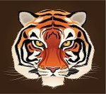Tiger,Animal,Safari Animals,Animal Head,Ilustration,Wildlife,Looking,Vector,Front View,Illustrations And Vector Art,Nature,Wild Animals,Animals And Pets,Staring,Brown Background,One Animal,Symmetry