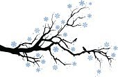 Branch,Tree,Winter,Bird,Silhouette,Christmas,Vector,Snowflake,Snow,Black Color,White,Animal,Plant,Nature,Star Shape,Blue,Christmas Decoration,Ilustration,Season,December,Holiday Backgrounds,Vector Backgrounds,Christmas,Holidays And Celebrations,Illustrations And Vector Art,Snowing