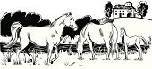 Horse,Landscape,Farm,Computer Graphic,Black Color,Pasture,Ranch,Vector,Running,Foal,Female Animal,Group Of Animals,Animals Feeding,Water,Male Animal,Pond,Mammals,Animals And Pets,Animal,Hoofed Mammal,Grazing,White Background,Art Product,Mammal,Pawed Mammal,Hill,Lake,Farm Animals,Digitally Generated Image,White,Farmhouse,Animal Backgrounds,Ilustration,Stallion,Scenics,Vertebrate