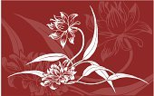 Single Flower,Red,Floral Pattern,Leaf,No People,Outline,White,Springtime,Horizontal,Backgrounds,Swirl,Elegance,Creativity,Curve,Fragility,Digitally Generated Image,accent,Computer Graphic,Nature,Design,Illustrations And Vector Art,Flowers,Femininity,Vector,Ilustration,Beauty In Nature,Color Image