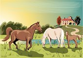 Horse,Vector,Ranch,Lake,Scenics,Farm,Landscape,Pond,Grazing,Running,Hill,Farmhouse,Animal,Water,Foal,Digitally Generated Image,Art Product,Computer Graphic,Male Animal,Hoofed Mammal,Group Of Animals,Herb,Mammals,Animals And Pets,Pasture,Farm Animals,Horse Family,Brown,Pawed Mammal,Animal Backgrounds,Green Color,Named Animal,Ilustration,Female Animal,Vertebrate,Animals Feeding,Red,Black Color,Stallion,White,Blue,Mammal
