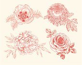 Flower,Peony,Retro Revival,Rose - Flower,Wedding,Botany,Drawing - Art Product,Vector,Poppy,Chrysanthemum,Outline,Antique,Engraved Image,Romance,Set,Isolated,Birthday,Mothers Day,Valentine's Day - Holiday,Summer,Ornate,Flower Head,Classic,Elegance,Pastel Colored,Hand-drawn,Vignette,Close-up,Series,Design Element,Valentine's Day,Blossoming,Beauty In Nature,Pink Princess Peony,Leaf,Corner Design,Contour Drawing,Holidays And Celebrations,Illustrations And Vector Art,Vector Florals,Weddings,Oriental Poppy