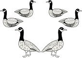 Goose,Christmas,Lying Down,Carol,Number 6,Illustrations And Vector Art,Farm Animals,Animals And Pets,Vector,Ilustration,Black And White