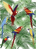 Parrot,Tropical Rainforest,Bird,Macaw,Forest,Flying,Animal,Palm Tree,Ilustration,Wildlife,Backgrounds,Vector,Nature,Animals In The Wild,Birds,Illustrations And Vector Art,Animals And Pets,Vector Backgrounds