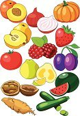 Yam,Onion,Raspberry,Zucchini,Walnut,Xigua,Quince,Strawberry,Nectarine,Ugli,Raw Food,Fruits And Vegetables,Illustrations And Vector Art,Food And Drink,Tomato,Victoria Plum,Pumpkin